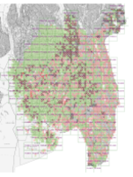 Resultat av florakartlegging av 1km x 1km ruter i 2019