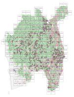 Resultat av florakartlegging av 1km x 1km ruter i 2020